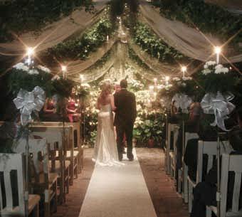 Photos inside the conservatory garden wedding conservatory garden wedding venue st louis mo junglespirit Gallery