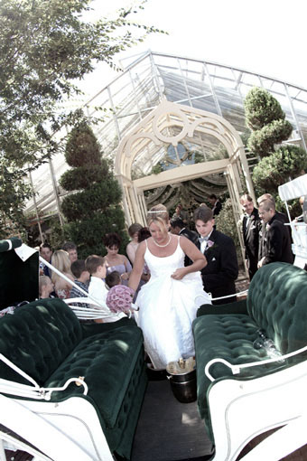 Horse Drawn Carriage - The Conservatory Garden Wedding Venue, St. Louis, MO